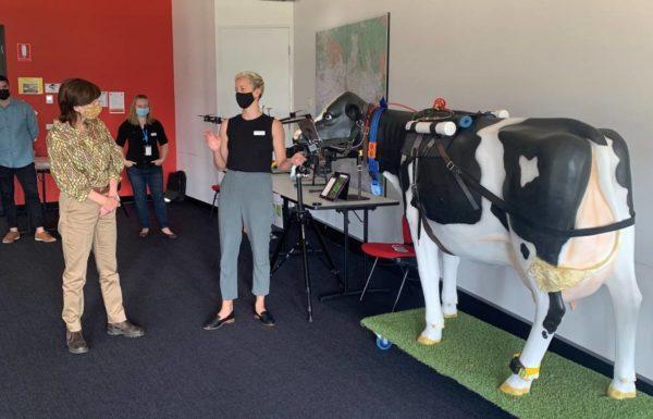 Mary-Anne Thomas, Victoria állam új mezőgazdasági minisztere (balra) ismerkedik a gyakorlattal az Ellinbank SmartFarm tejüzem területén - Fotó: Farmonline.com