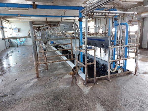 A tejipar szereplőinek sem tesznek jót a megtévesztő élelmiszernevek - Fotó: Magro.hu, CSZS, Érsekvadkert