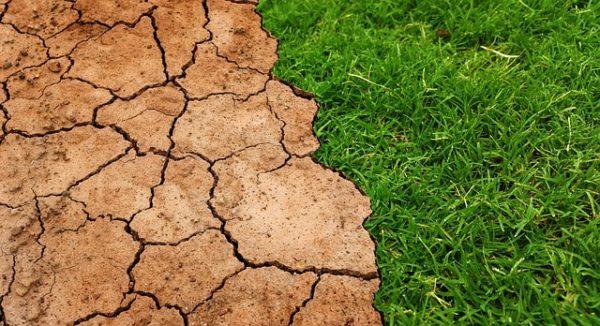 Első kézből mutatják az amerikai mezőgazdaság folyamatosan változó táját