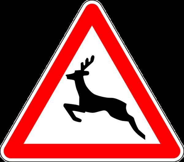 Vadveszély tábla - a kiegészítő táblával együtt védi a vadásztársaságot a felelősségvállalástól