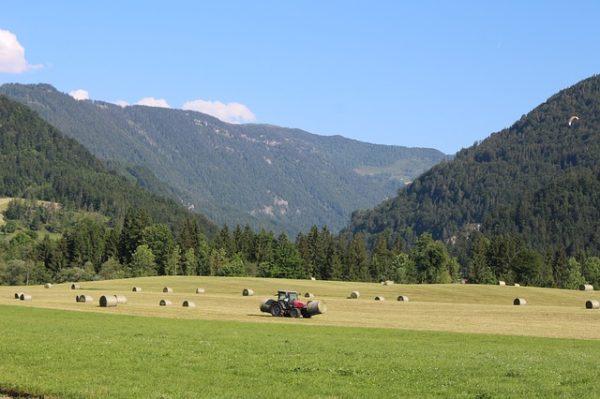 Az osztrák biogazdálkodás 25 százaléknyi földterületen folyik