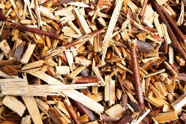Forgácsból és fűrészporból készült olyan környezetkímélő műanyag az Egyesült Államokban, ami a talajba ásva 3 hónap alatt teljesen lebomlik - képünk illusztráció
