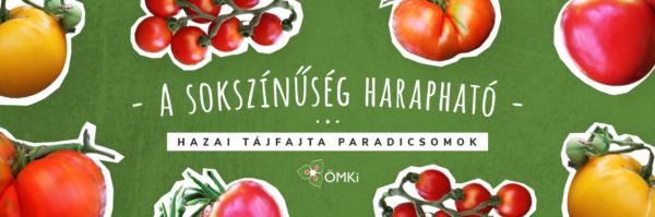 Magyar tájfajta paradicsomok