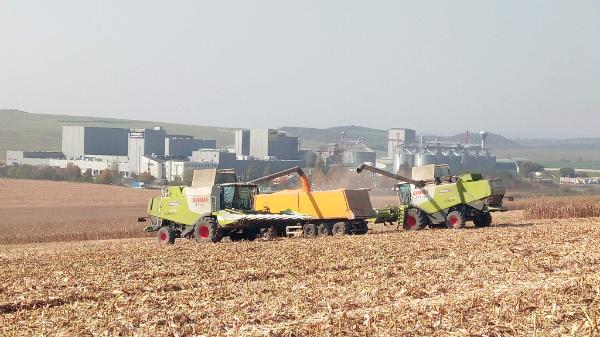 Így megy a precíziós mezőgazdaság a Gyermelyinél: hozamtérkép, adatgyűjtés, informatikai tudású traktoros dolgozik - Fotó: Keresztes Zsolt, növénytermesztési igazgató