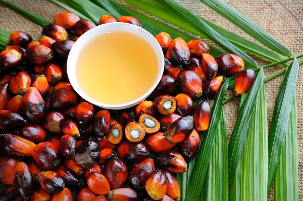 A kutatás alapfeltételezése, hogy a pálmaolajmentes termékeket fejlesztő vállalatok kommunikációjának fontos része lehetne a termeléskor fennálló környezeti és társadalmi kockázatok bemutatása
