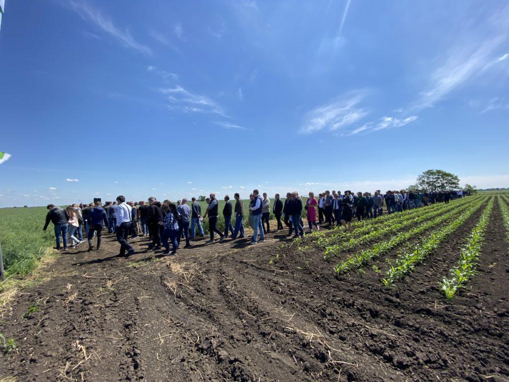 Új helyzet a magyar agrárpiacon: nagy mezőgazdasági integrátor cég alakult AgroLink Zrt. néven - Fotó: Magro.hu, BT, Nádudvar