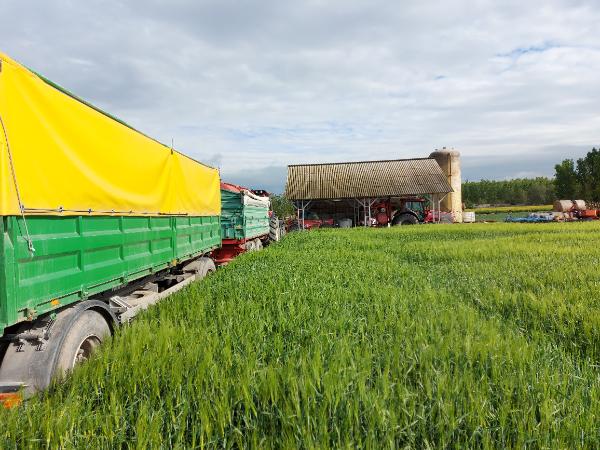 Teljesen új haszonnövények jelenhetnek meg a szántókon - Fotó: Magro.hu, CSZS, Dusnok