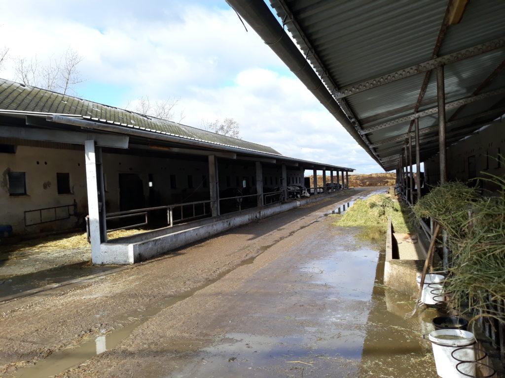 Megújulhatnak az állattenyésztés körülményei: több, mint 11,5 milliárdos támogatást kaptak a Veszprém megyei gazdák az állattartó telepek korszerűsítésére - Fotó: Magro.hu, CSZS, Nagykörű
