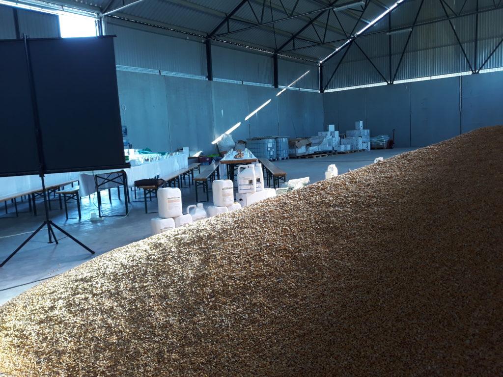 Jelentősen növeli a termésmennyiséget a tisztább levegő - Fotó: Magro.hu, CSZS, Újpetre