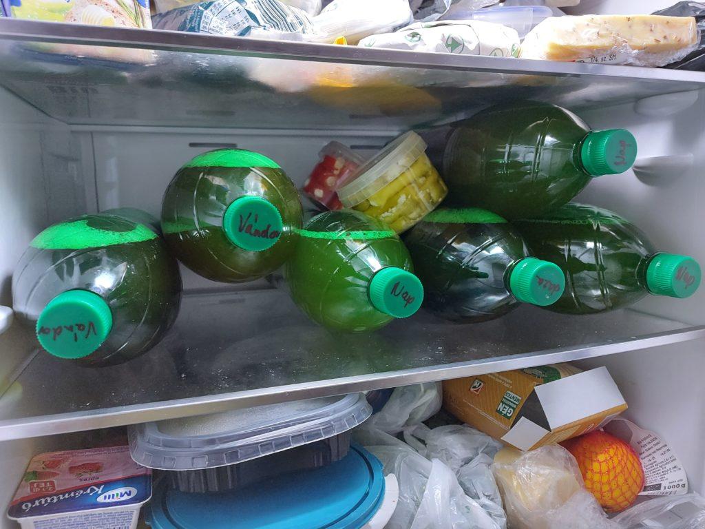 Egyértelmű címkékkel csökkentené az Európai Unió az élelmiszerpazarlás miatt kárba veszett termékek mennyiségét - Fotó: Magro.hu, CSZS, Budapest
