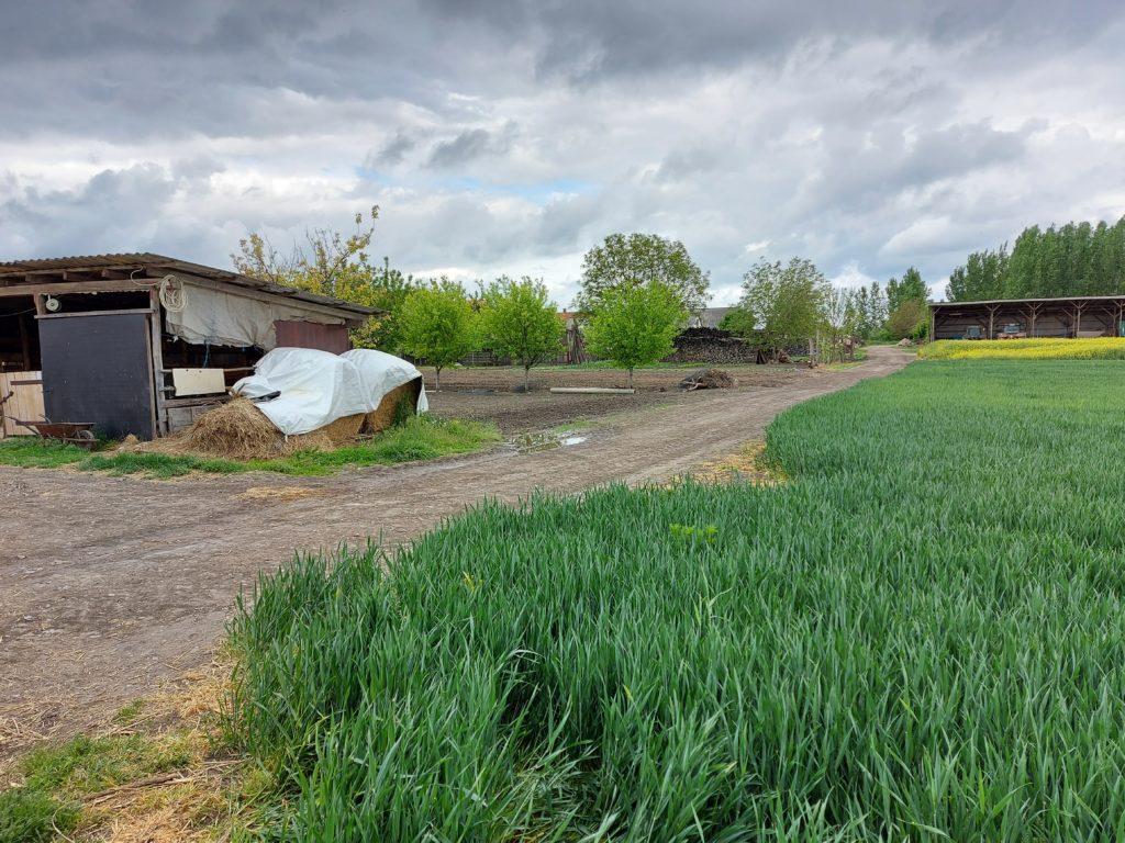 Sok mindenre figyelni kell az őstermelőknek a helyi iparűzési adó megosztása esetén - Fotó: Magro.hu, CSZS, Dusnok