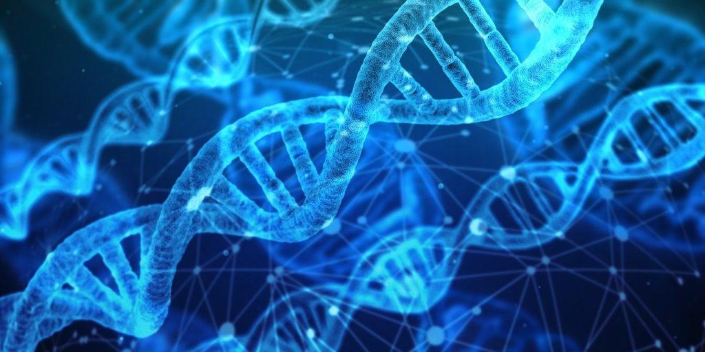 Ma is a fajta- és a génmegőrzés a központ fő feladata. Persze az elmúlt hatvan esztendőben nagyon sok minden változott