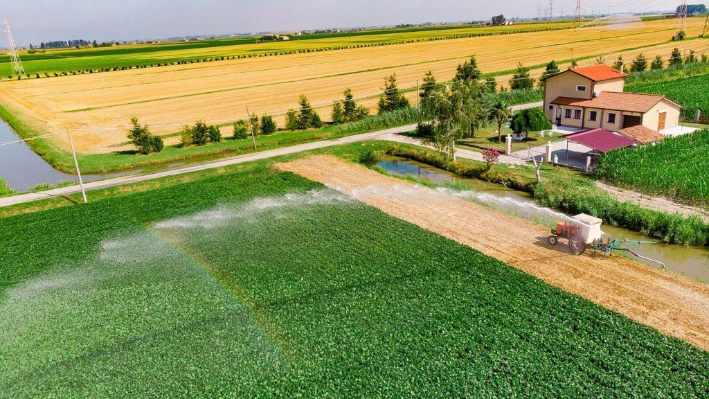 Már 2015-ben elkezdték tesztelni a víztakarékos csepegtetést. Ez a technológiai elem a mai napig része öntözési technológiájuknak