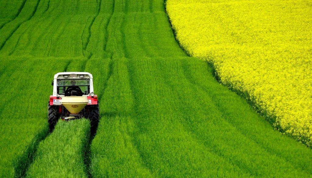 Az észak-amerikai kormány úgy döntött, eltörli azt az előírást, mely szerint az üzemanyagokba kötelező belekeverni a biohajtóanyagot