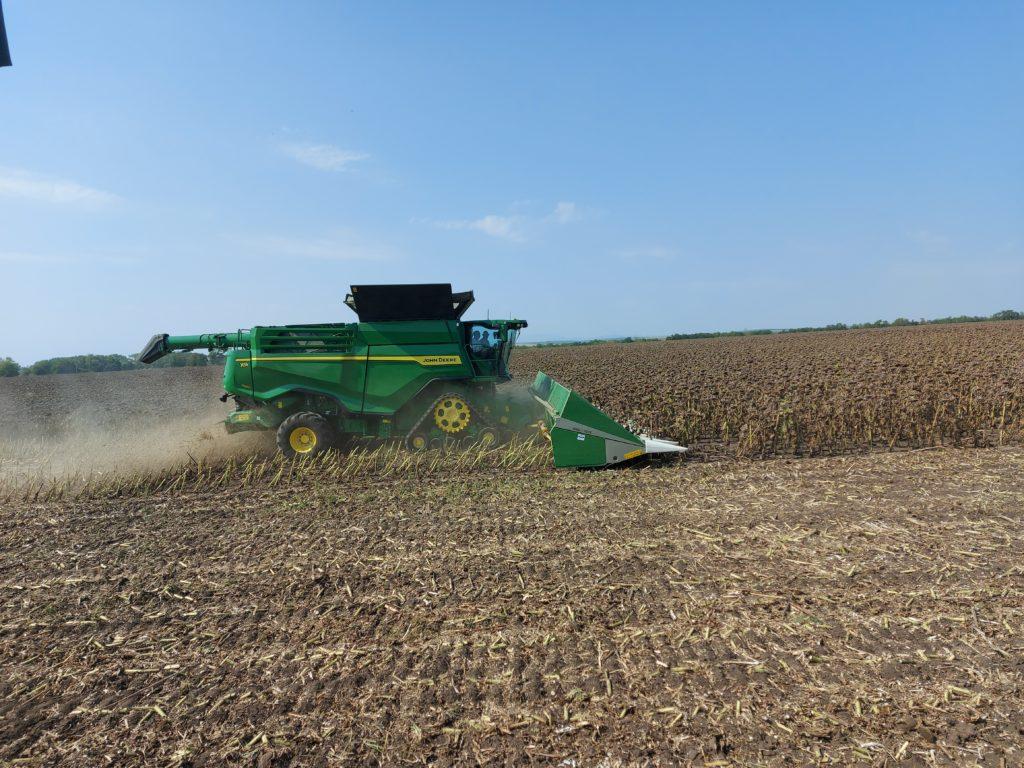 Jelentősen nőtt a búza, a kukorica, a repce, a napraforgó és a szója ára is a tavalyi adatokhoz képest - Fotó: Magro.hu, CSZS, Mezőkövesd