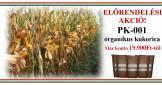 Eladó kukorica vetőmag
