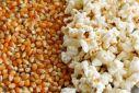 Eladó pattogtatni való kukorica